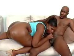 Black BBW sucks huge chocolate cock black chubby movies