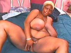 Ebony BBW knows how to handle cock black chubby movies